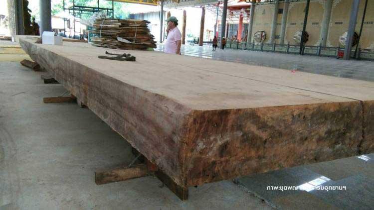 <multi>[fr]Planche de teck provenant du arbre géant[en]Teak board from giant tree</multi>