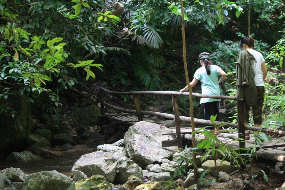 Sentier dans le parc Chaloem Rattanakosin